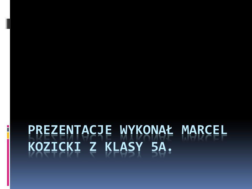 Prezentacje wykonał Marcel Kozicki z klasy 5A.