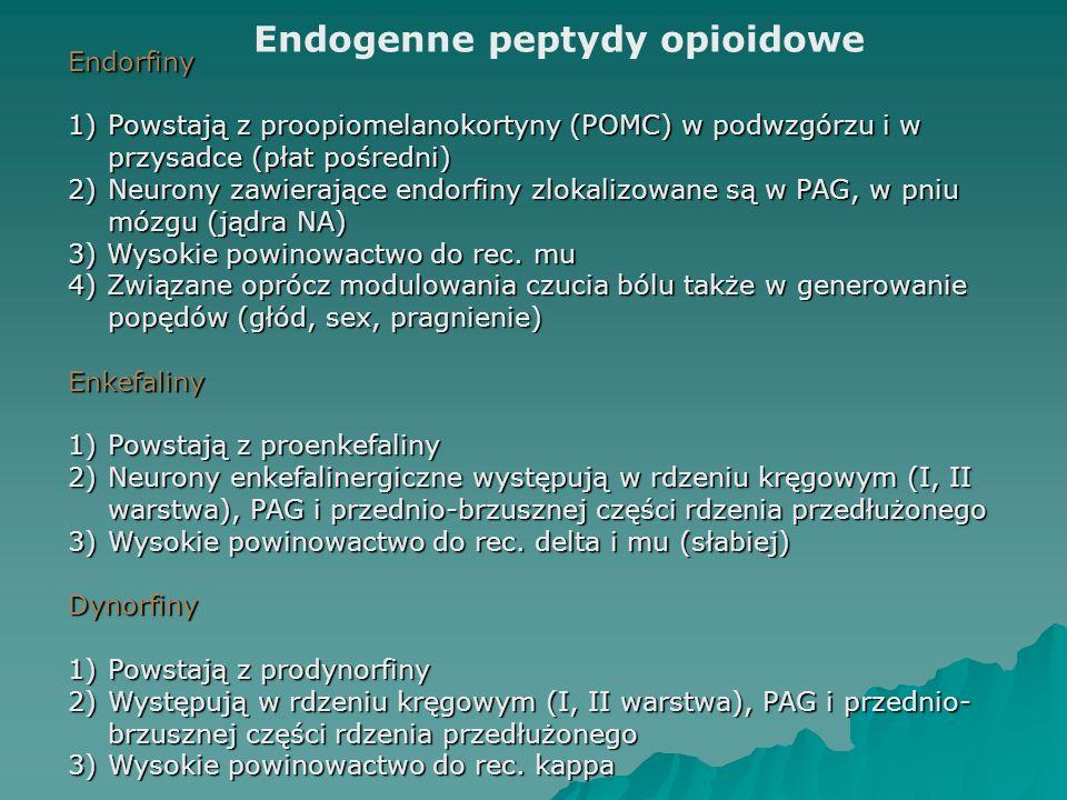 Endogenne peptydy opioidowe