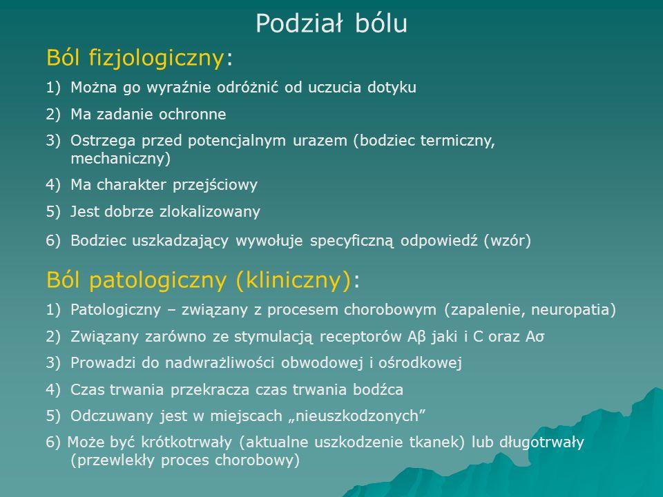 Podział bólu Ból fizjologiczny: Ból patologiczny (kliniczny):