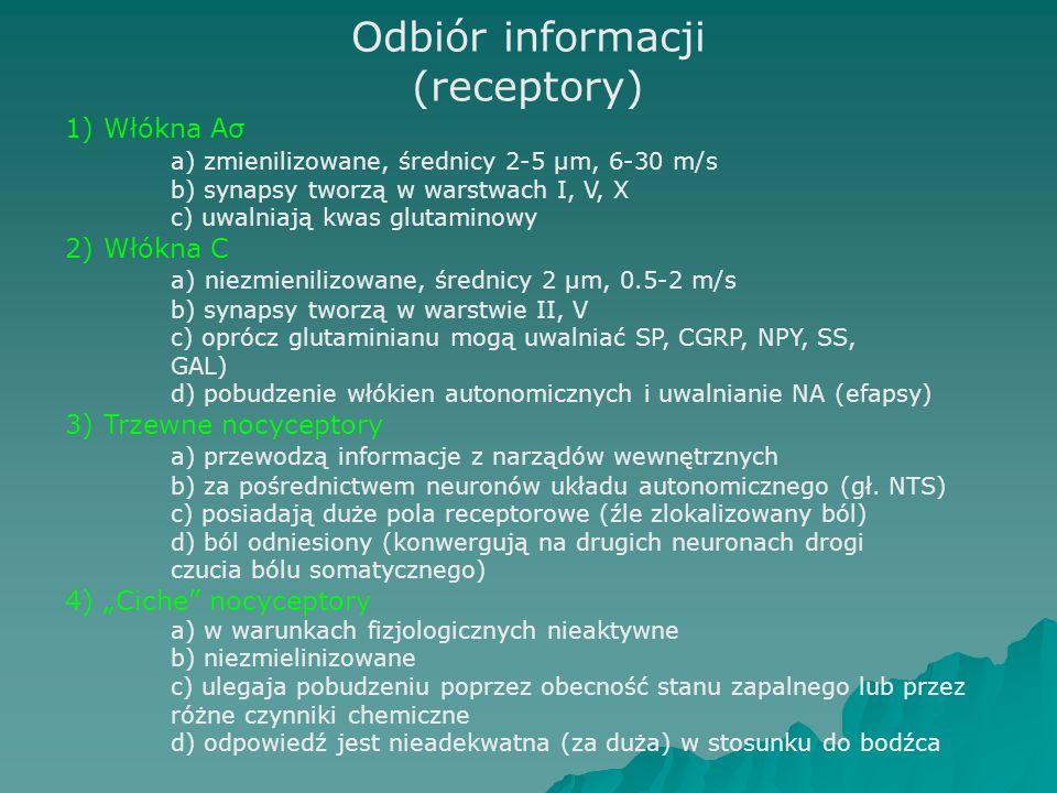 Odbiór informacji (receptory)