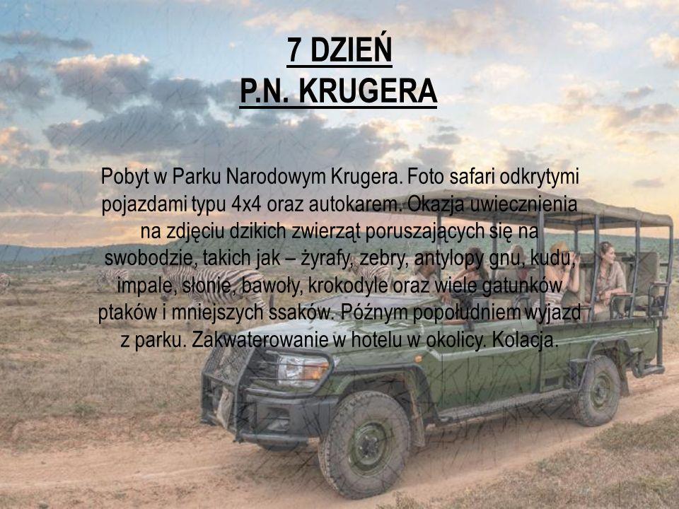 7 DZIEŃ P.N. KRUGERA.