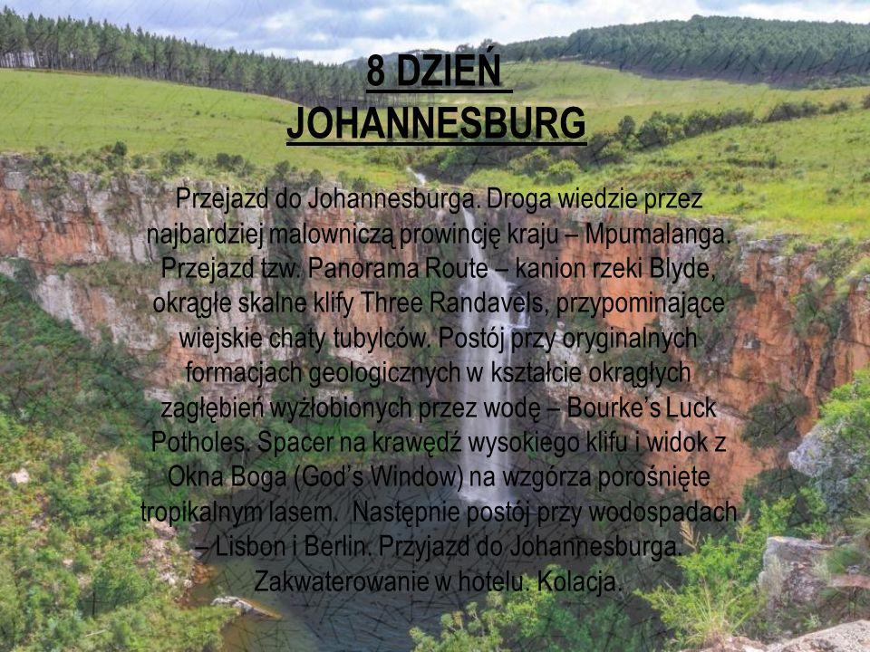 8 DZIEŃ JOHANNESBURG.
