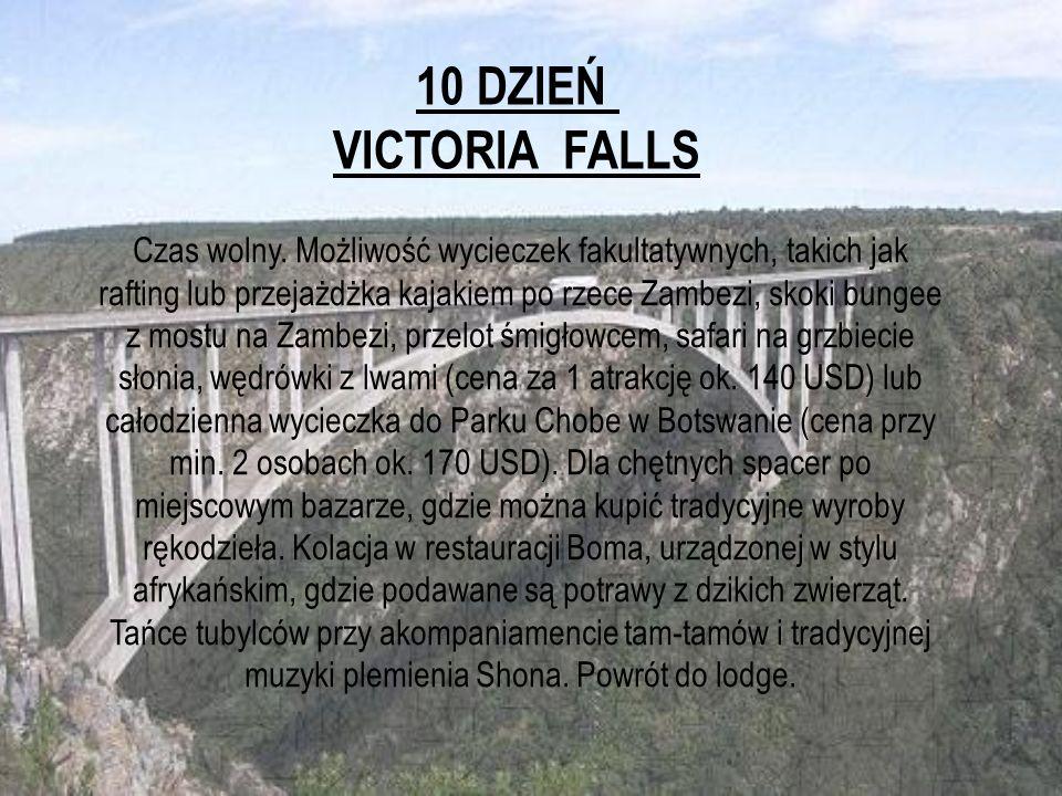 10 DZIEŃ VICTORIA FALLS.