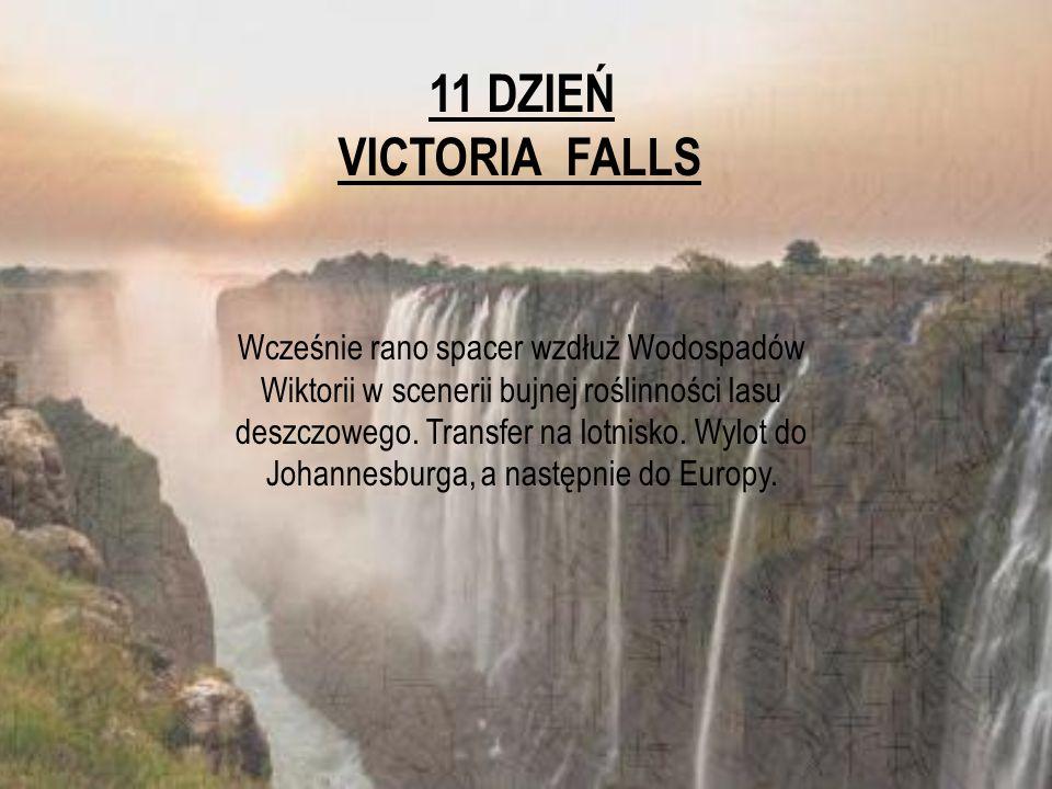 11 DZIEŃ VICTORIA FALLS.