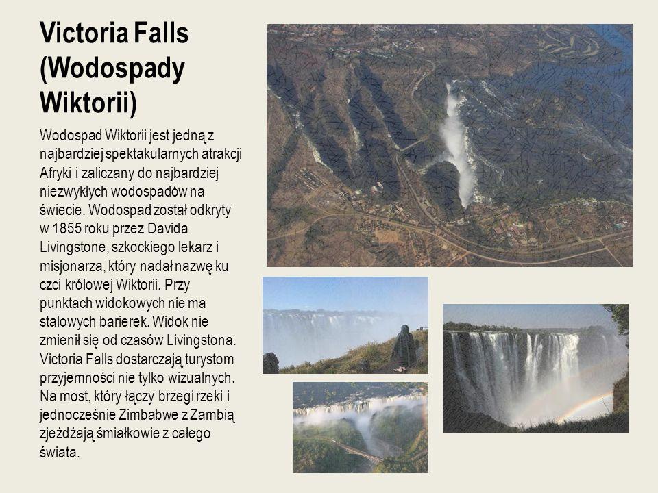 Victoria Falls (Wodospady Wiktorii)