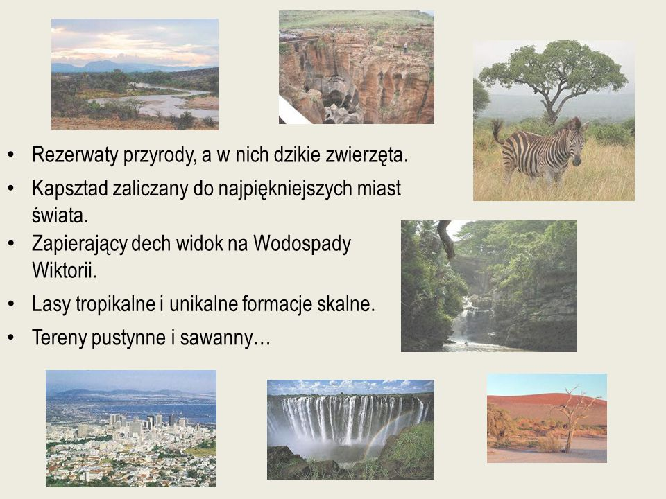 Rezerwaty przyrody, a w nich dzikie zwierzęta.