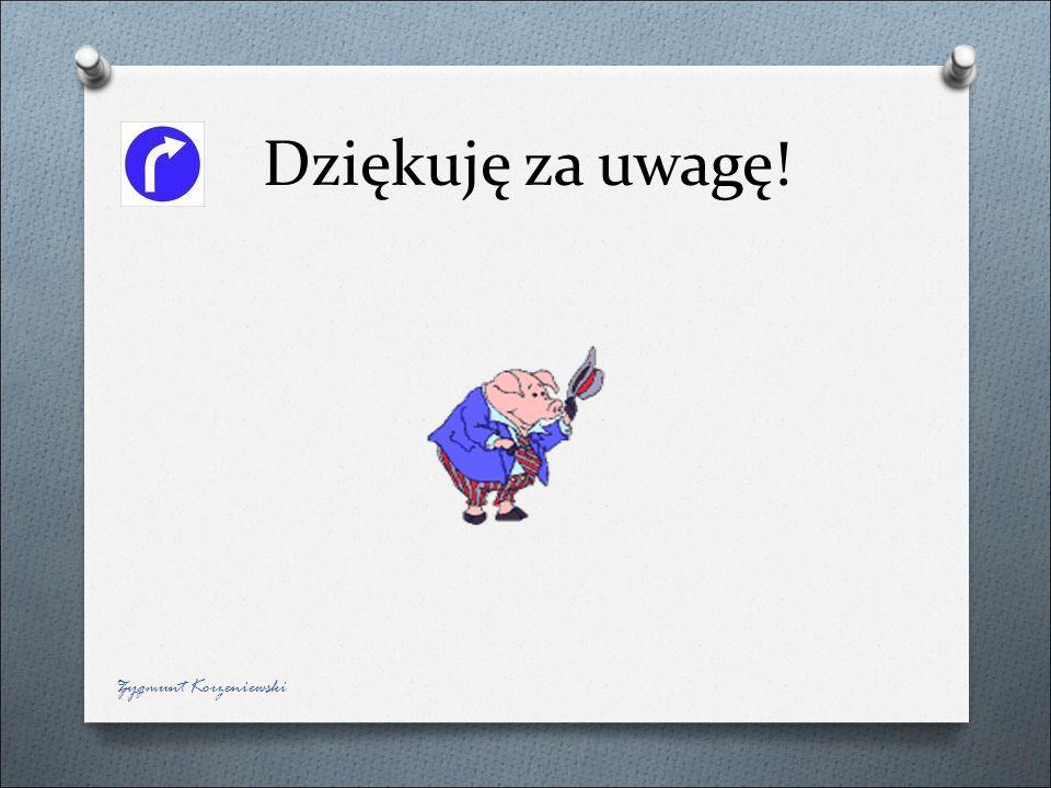 Dziękuję za uwagę! Zygmunt Korzeniewski