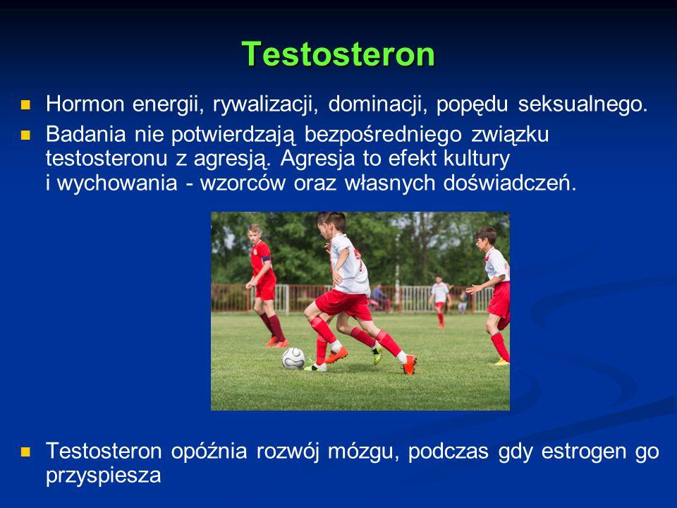 Testosteron Hormon energii, rywalizacji, dominacji, popędu seksualnego.