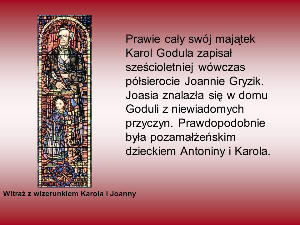 Prawie cały swój majątek Karol Godula zapisał sześcioletniej wówczas półsierocie Joannie Gryzik. Joasia znalazła się w domu Goduli z niewiadomych przyczyn. Prawdopodobnie była pozamałżeńskim dzieckiem Antoniny i Karola.
