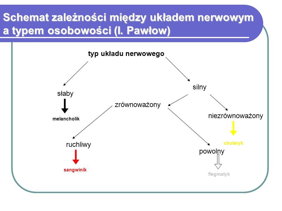Schemat zależności między układem nerwowym a typem osobowości (I
