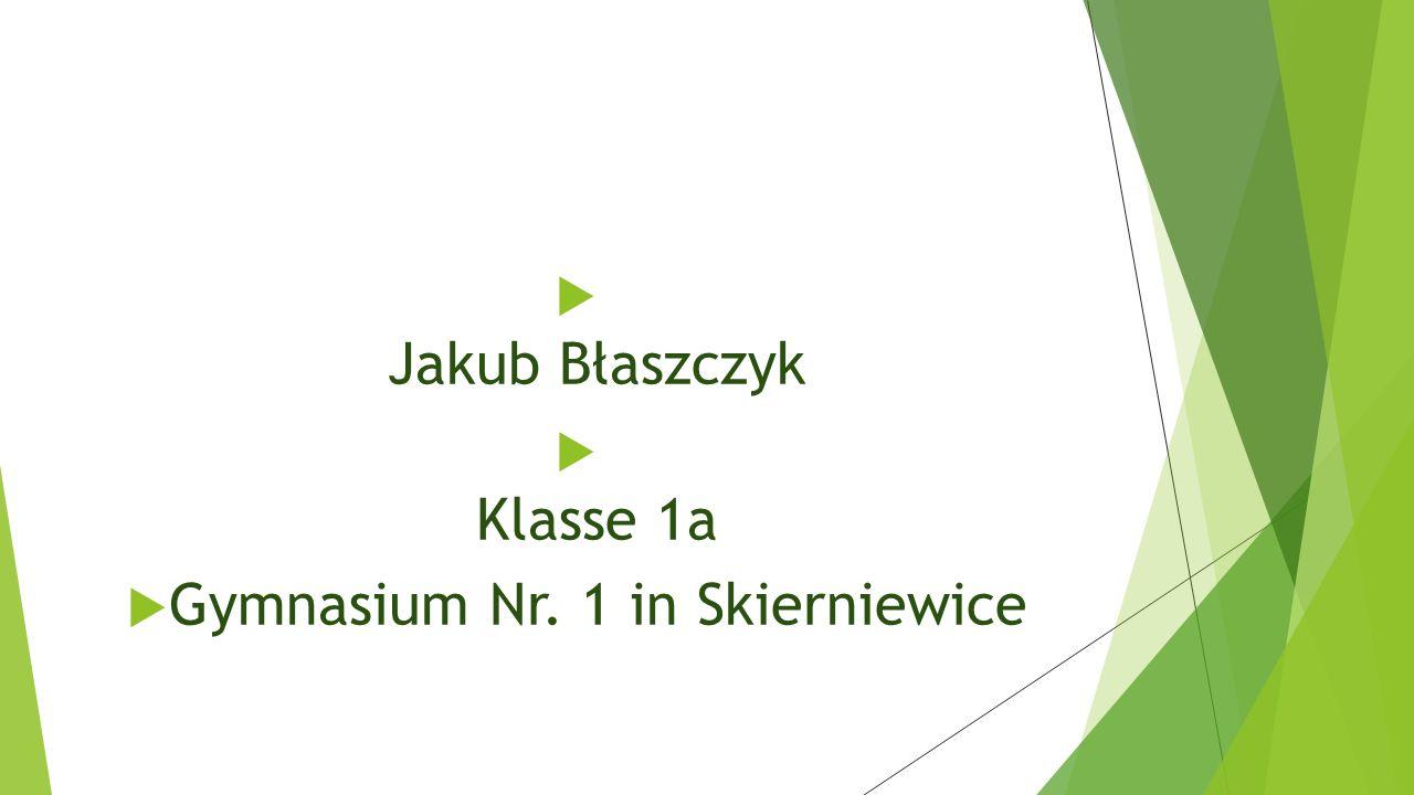 Gymnasium Nr. 1 in Skierniewice