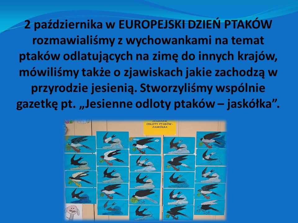 2 października w EUROPEJSKI DZIEŃ PTAKÓW rozmawialiśmy z wychowankami na temat ptaków odlatujących na zimę do innych krajów, mówiliśmy także o zjawiskach jakie zachodzą w przyrodzie jesienią.