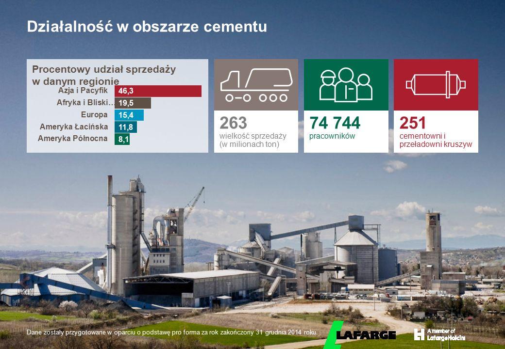 Działalność w obszarze cementu