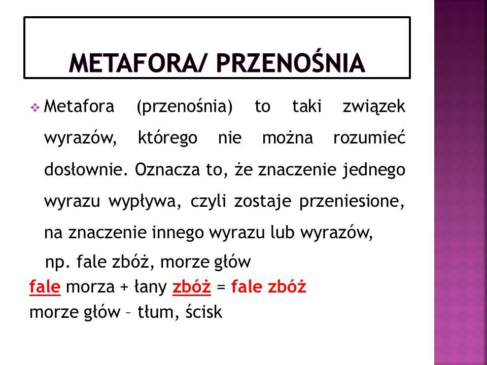 Metafora/ przenośnia