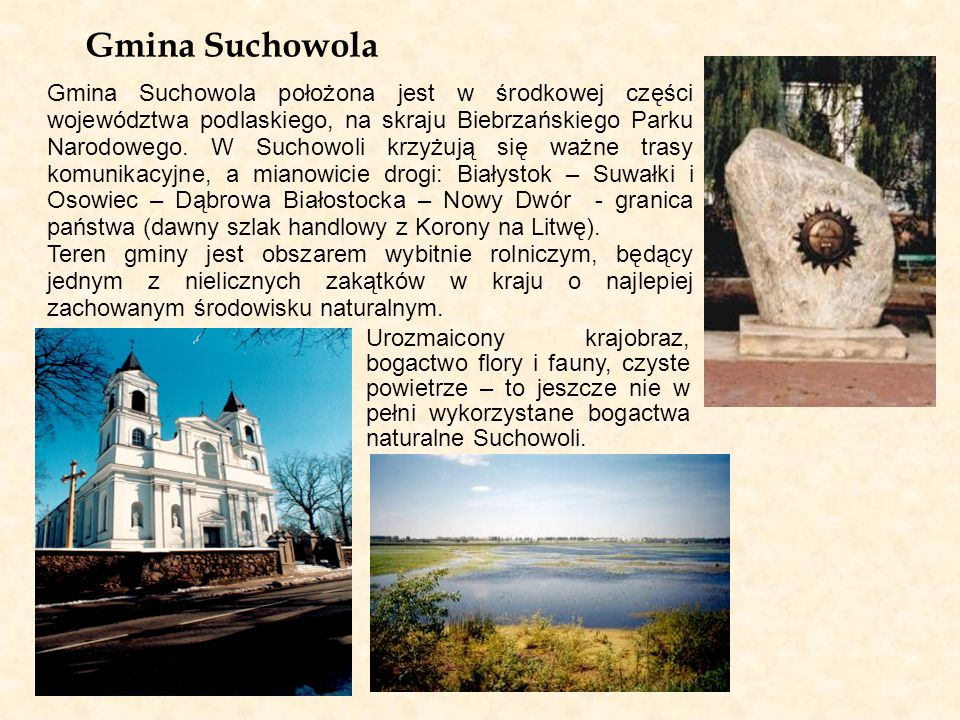 Gmina Suchowola