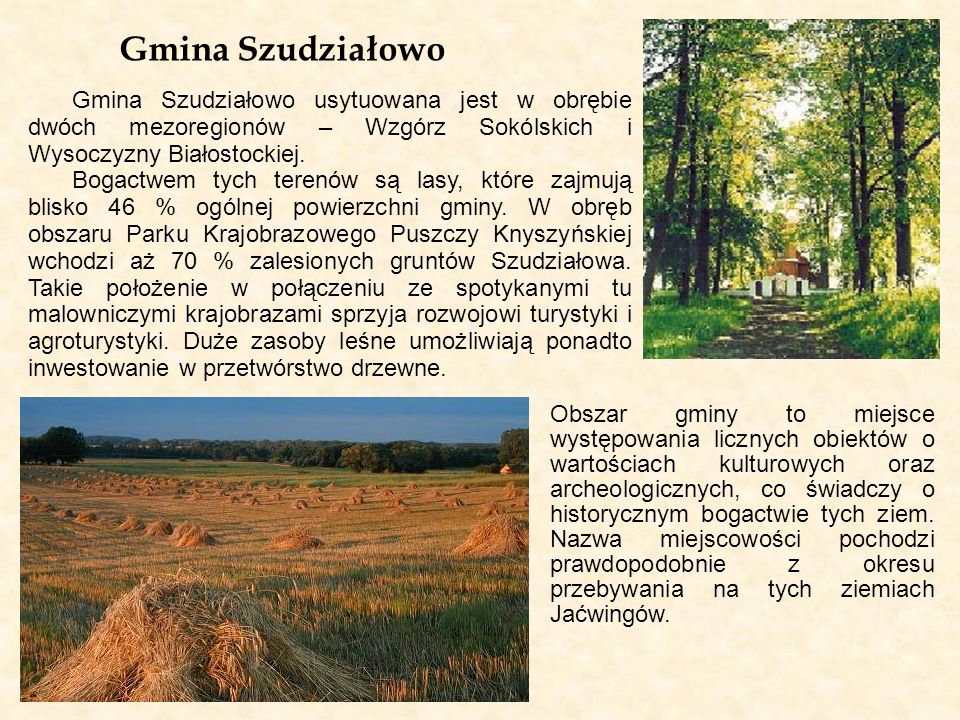 Gmina Szudziałowo Gmina Szudziałowo usytuowana jest w obrębie dwóch mezoregionów – Wzgórz Sokólskich i Wysoczyzny Białostockiej.