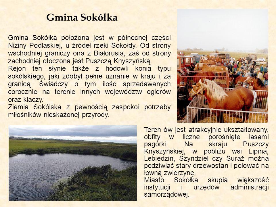 Gmina Sokółka
