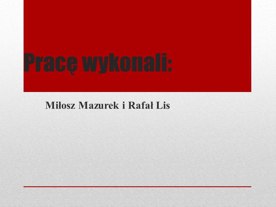 Miłosz Mazurek i Rafał Lis