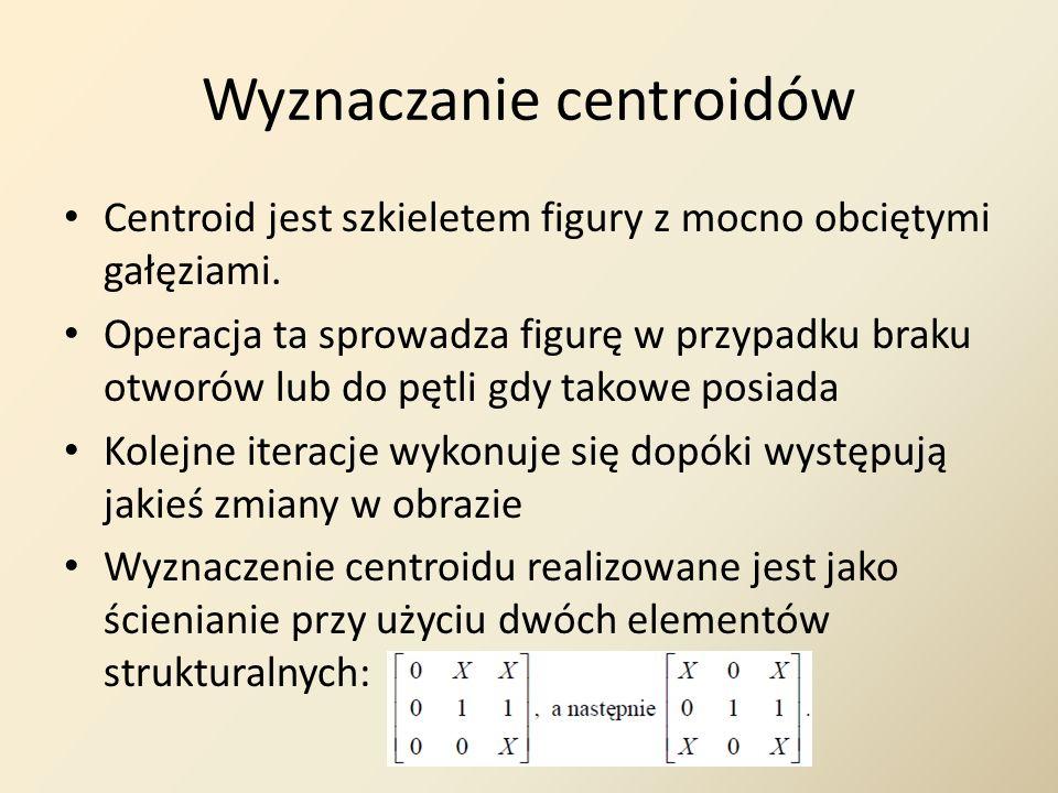 Wyznaczanie centroidów
