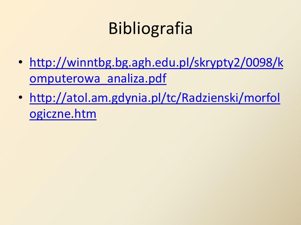 Bibliografia http://winntbg.bg.agh.edu.pl/skrypty2/0098/komputerowa_analiza.pdf.
