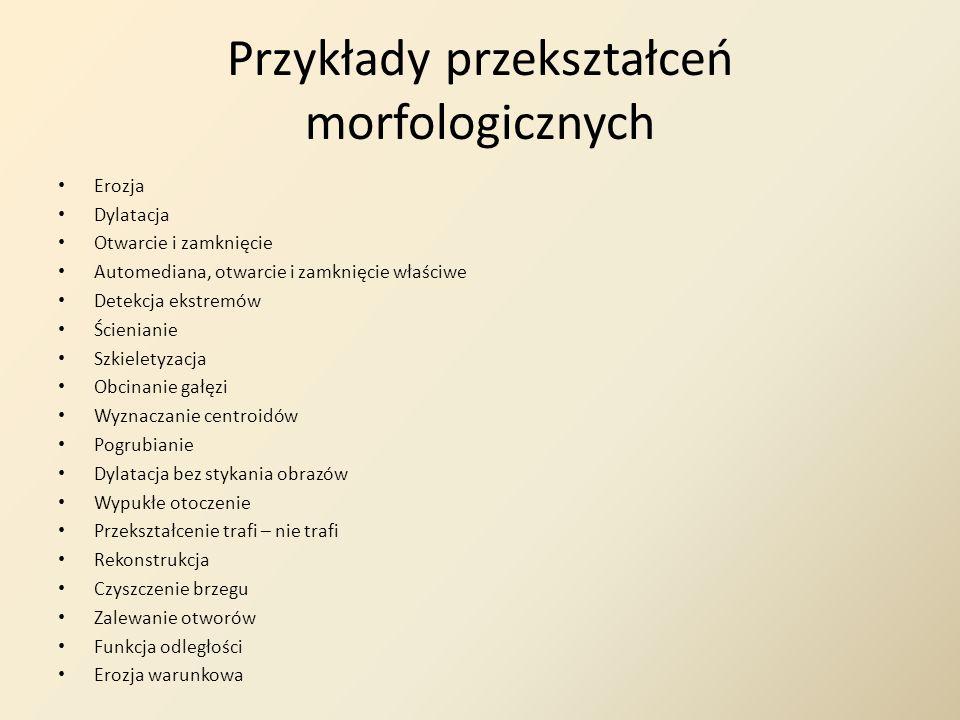 Przykłady przekształceń morfologicznych