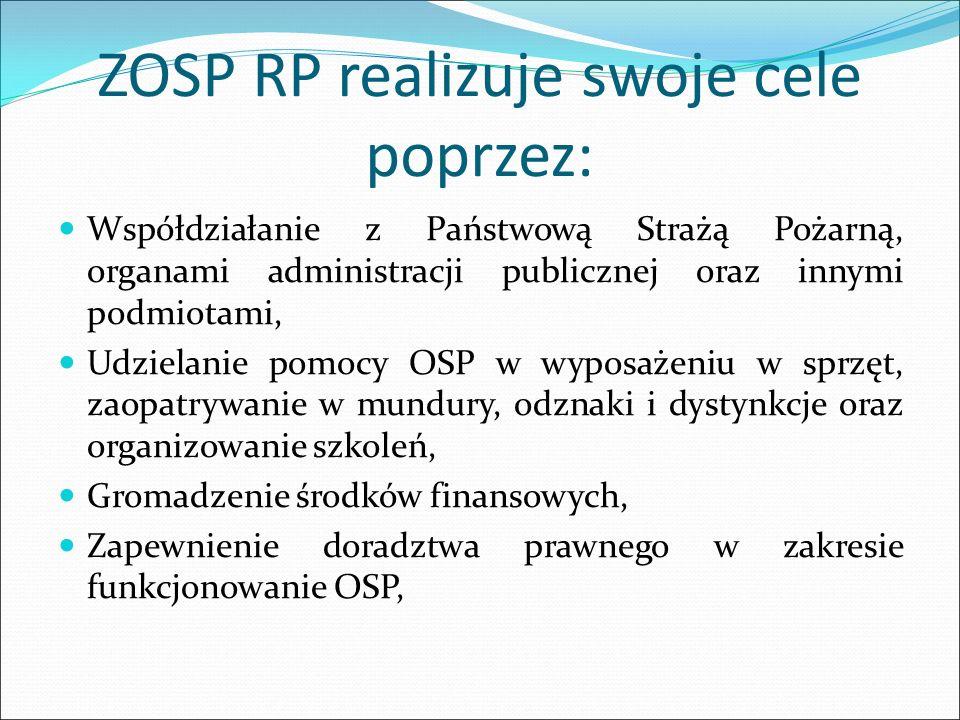 ZOSP RP realizuje swoje cele poprzez: