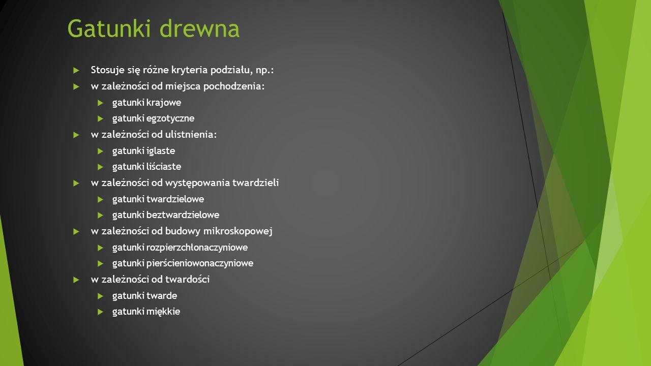 Gatunki drewna Stosuje się różne kryteria podziału, np.: