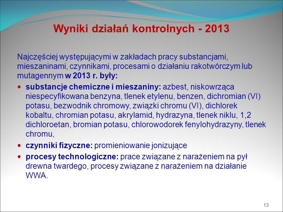 Wyniki działań kontrolnych - 2013