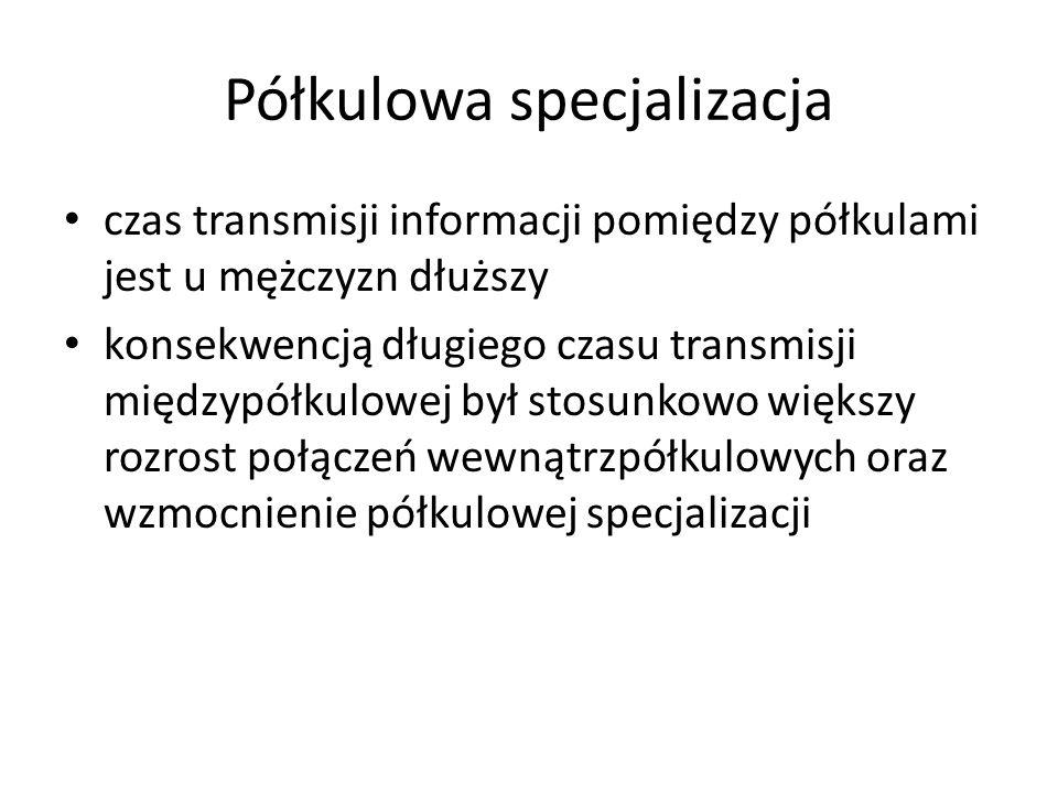 Półkulowa specjalizacja