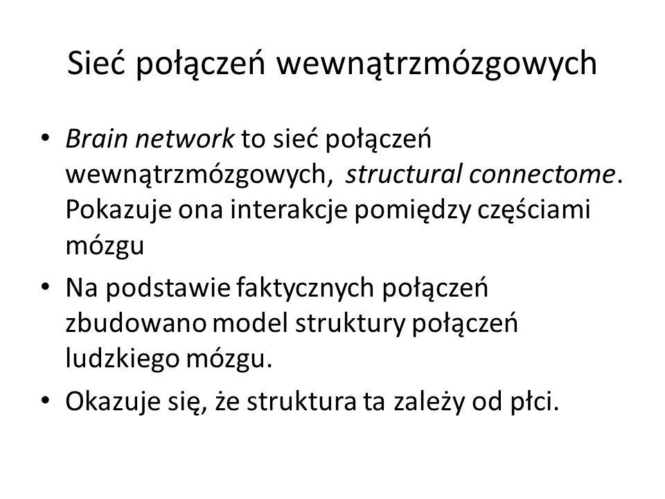 Sieć połączeń wewnątrzmózgowych