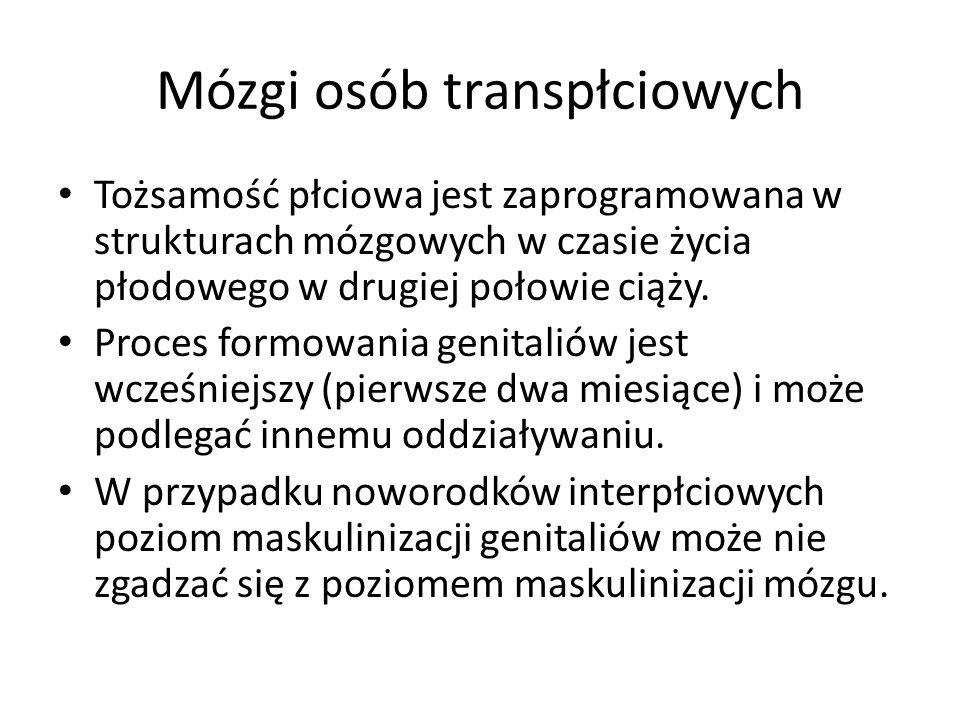 Mózgi osób transpłciowych