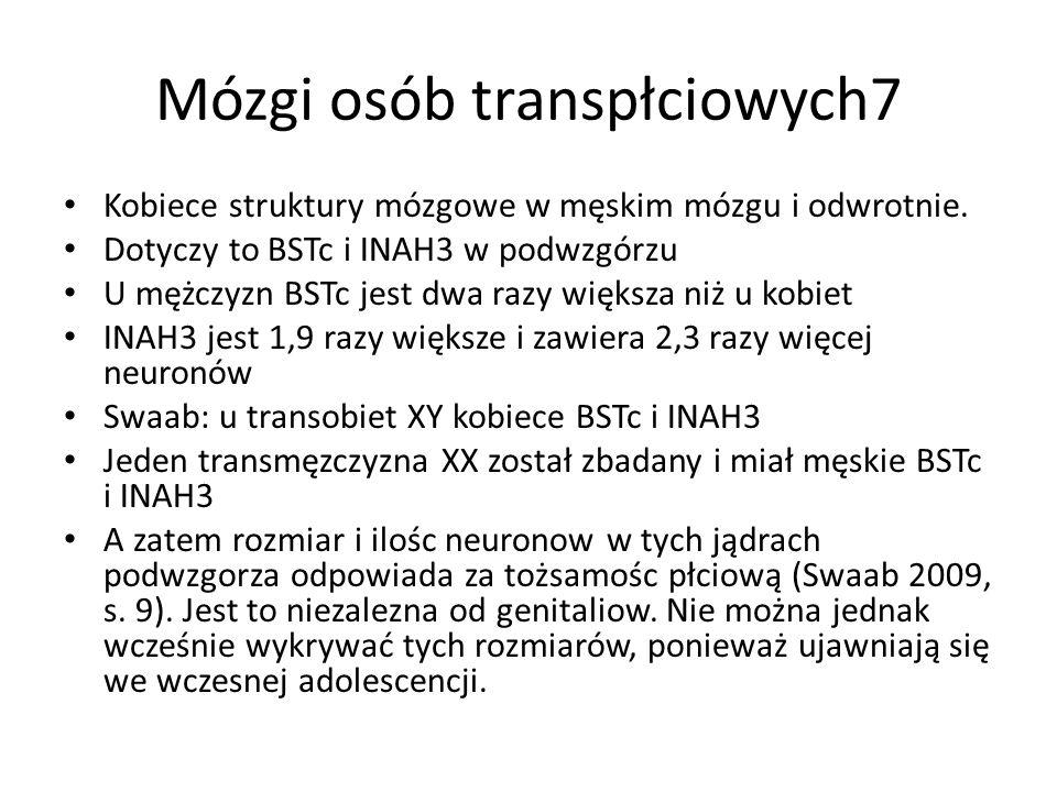 Mózgi osób transpłciowych7