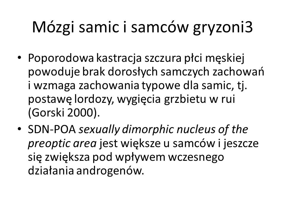 Mózgi samic i samców gryzoni3
