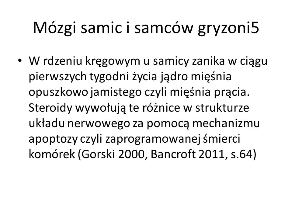 Mózgi samic i samców gryzoni5