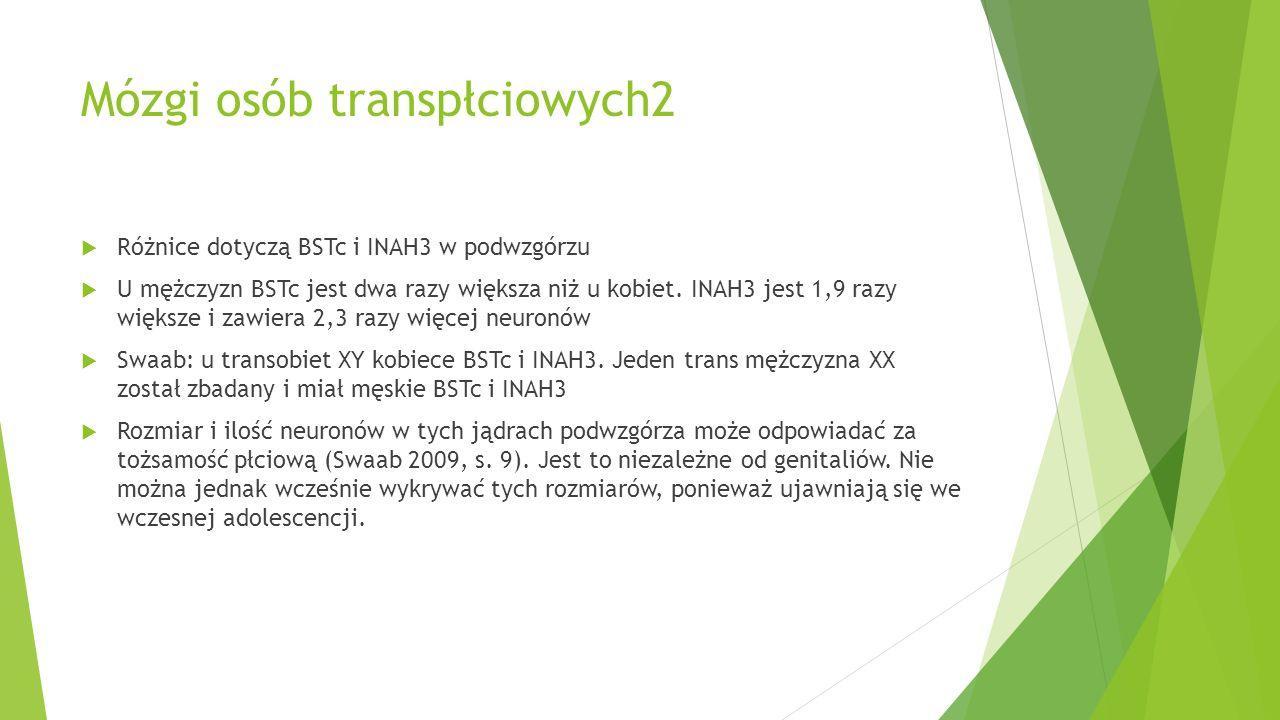 Mózgi osób transpłciowych2
