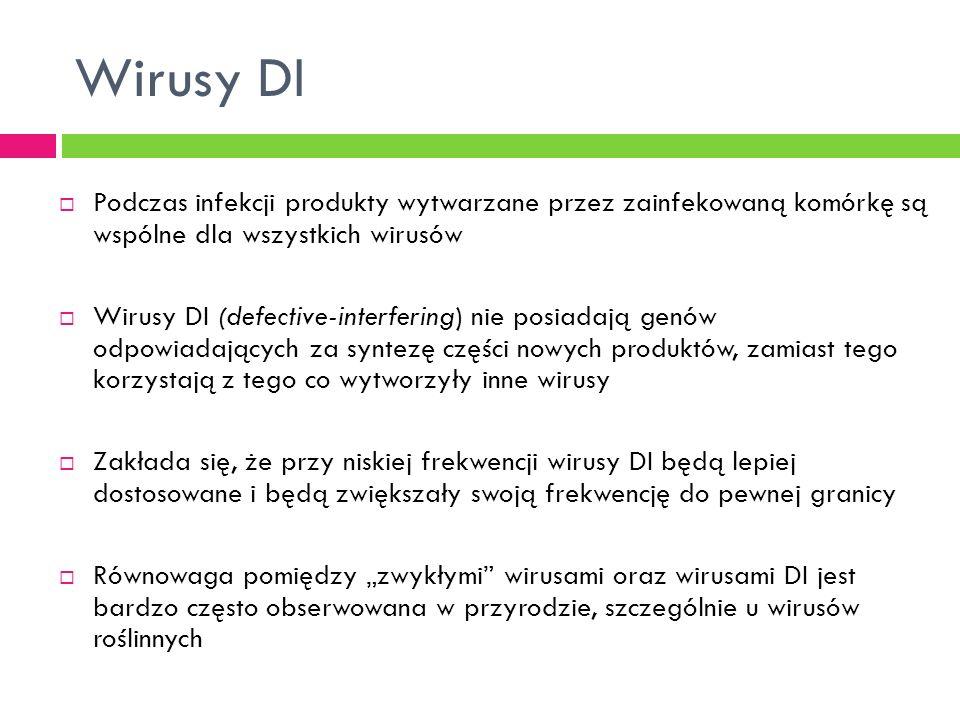 Wirusy DI Podczas infekcji produkty wytwarzane przez zainfekowaną komórkę są wspólne dla wszystkich wirusów.