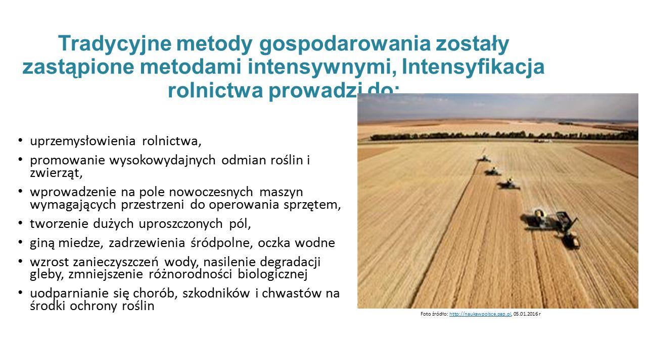 Tradycyjne metody gospodarowania zostały zastąpione metodami intensywnymi, Intensyfikacja rolnictwa prowadzi do:
