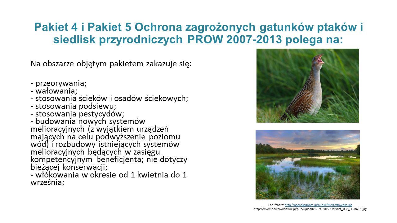 Fot. źródła: http://bagnasadobre.pl/public/file/torfowiska.jpg