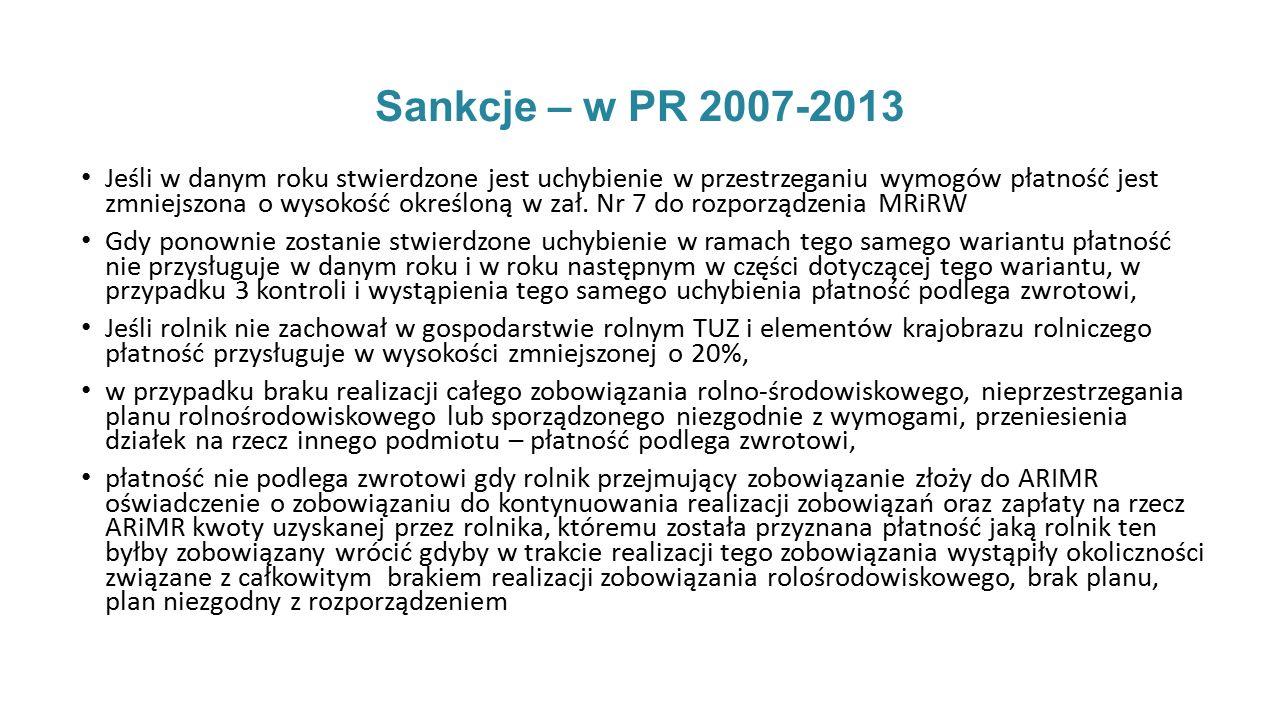 Sankcje – w PR 2007-2013