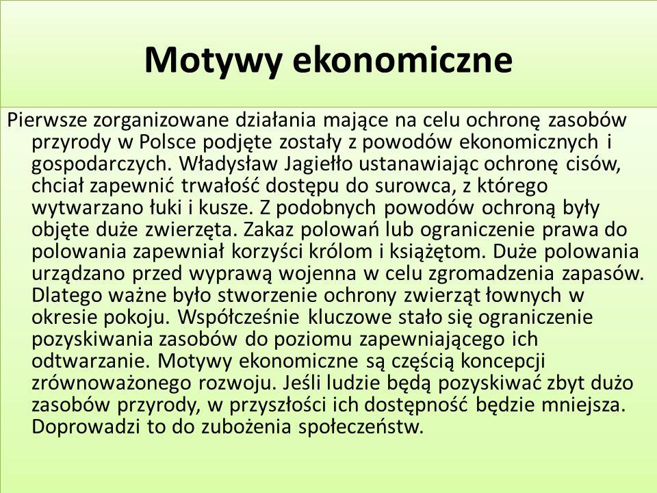 Motywy ekonomiczne