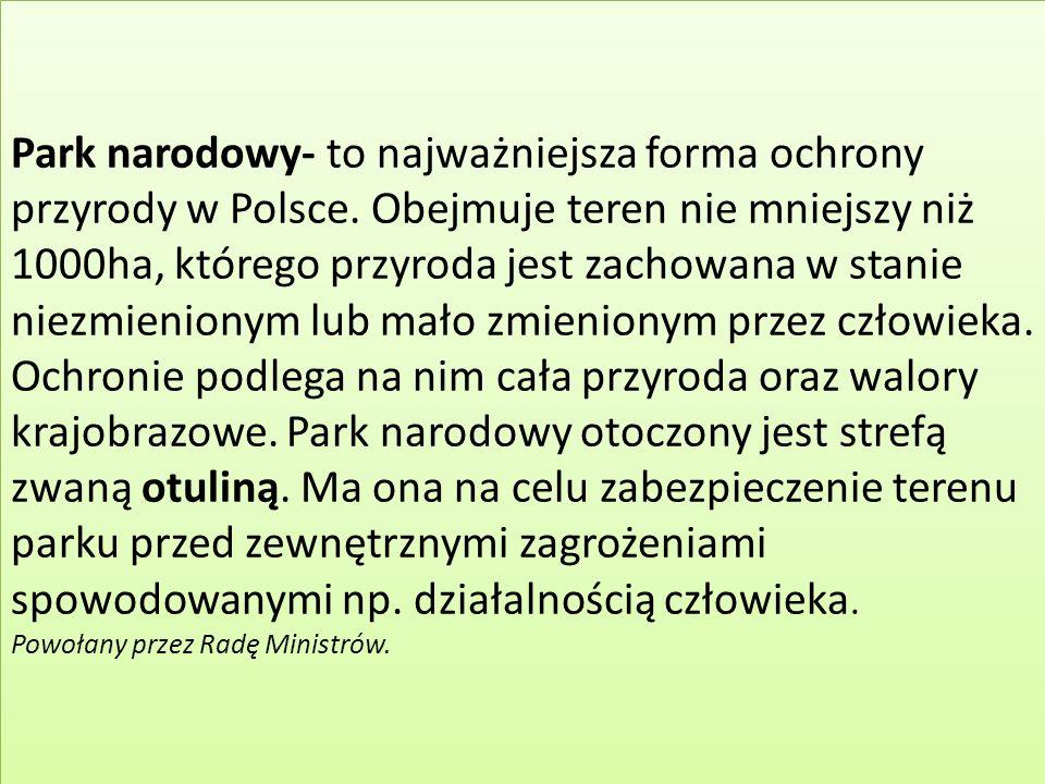 Park narodowy- to najważniejsza forma ochrony przyrody w Polsce