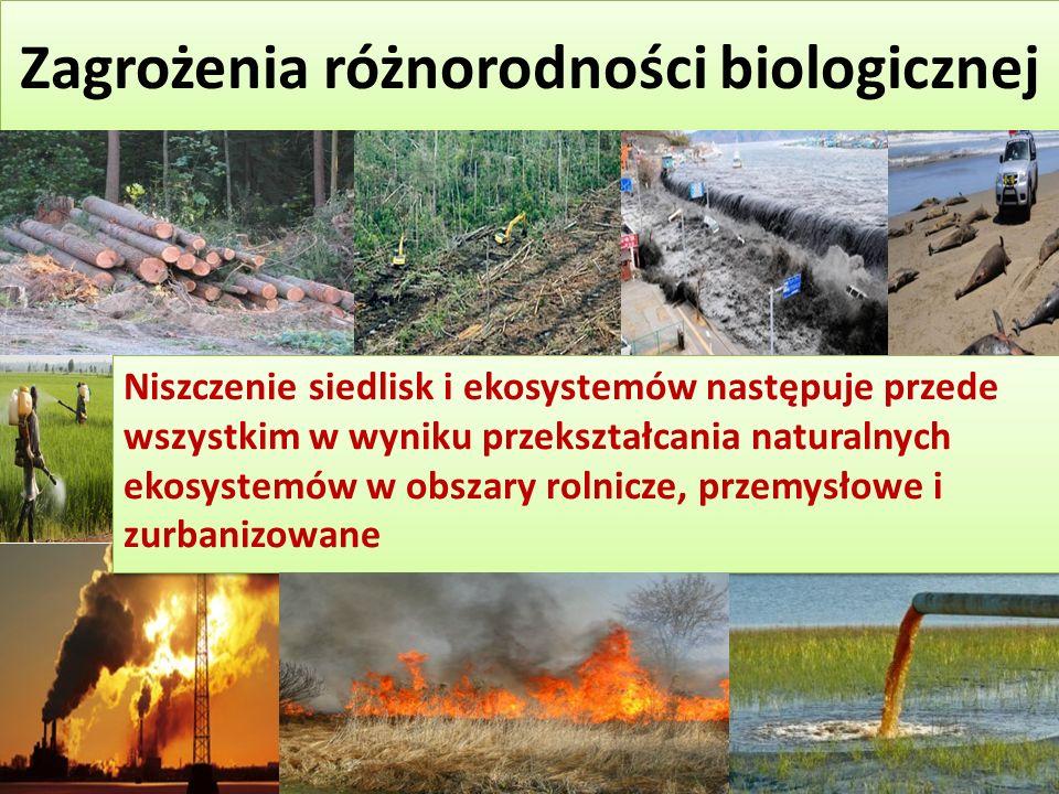 Zagrożenia różnorodności biologicznej