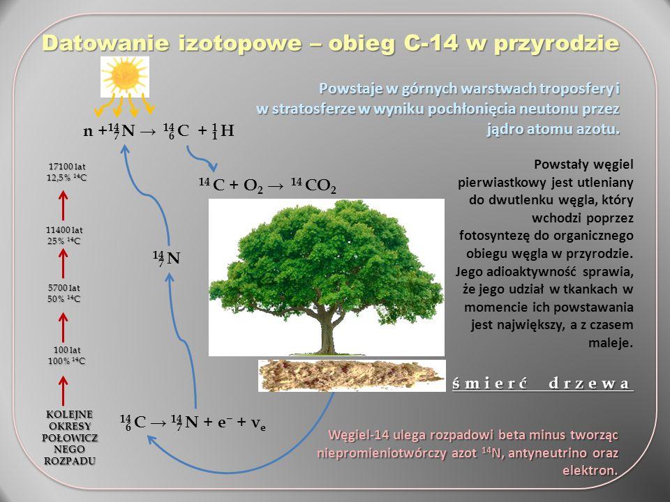 Datowanie izotopowe – obieg C-14 w przyrodzie