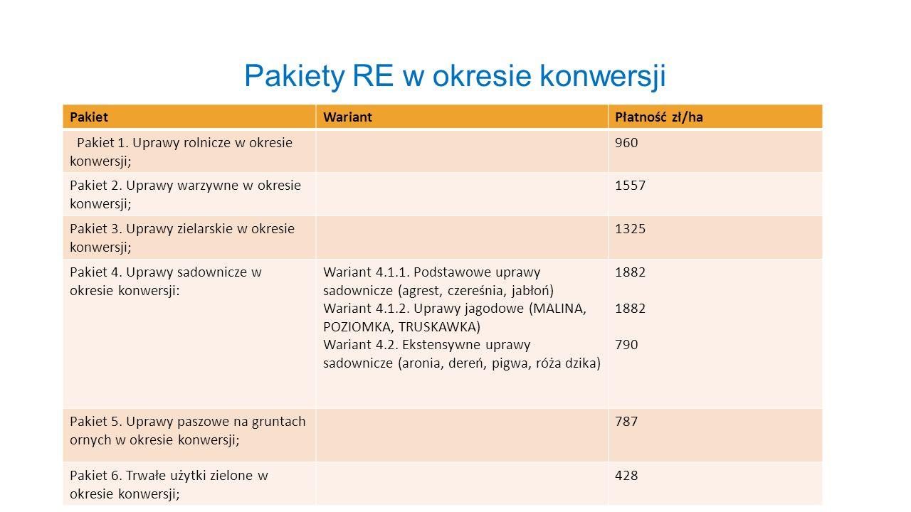 Pakiety RE w okresie konwersji