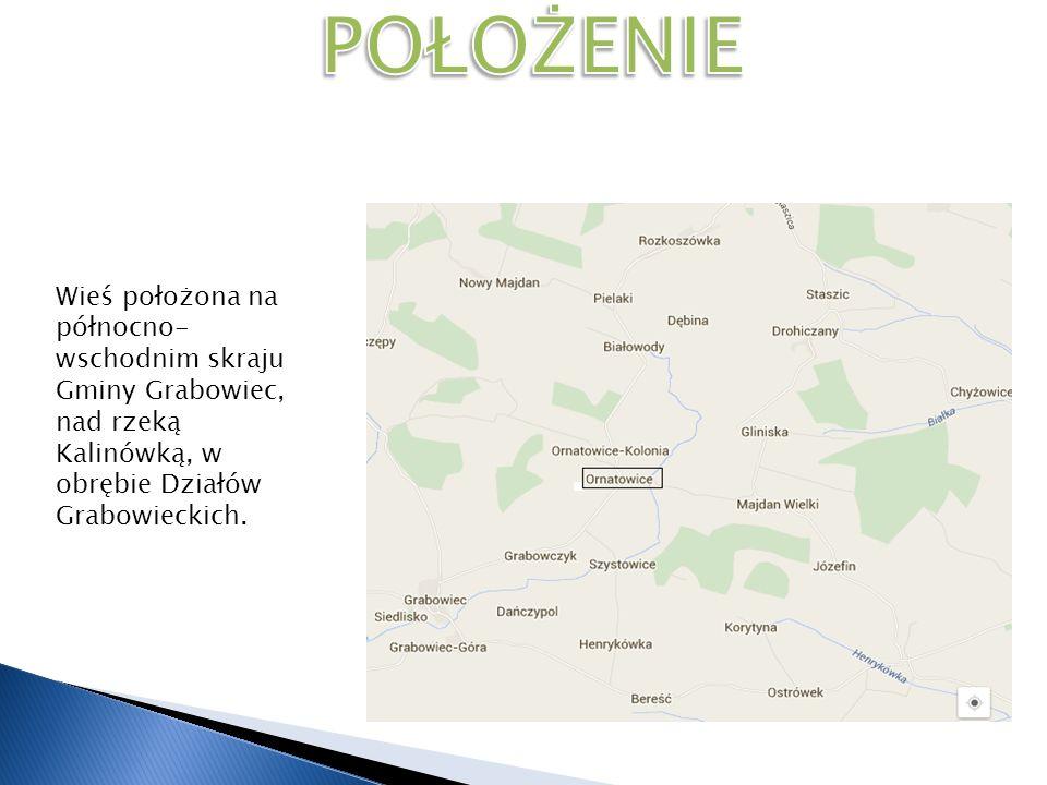 POŁOŻENIE Wieś położona na północno-wschodnim skraju Gminy Grabowiec, nad rzeką Kalinówką, w obrębie Działów Grabowieckich.