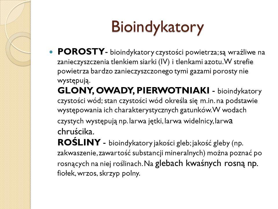 Bioindykatory