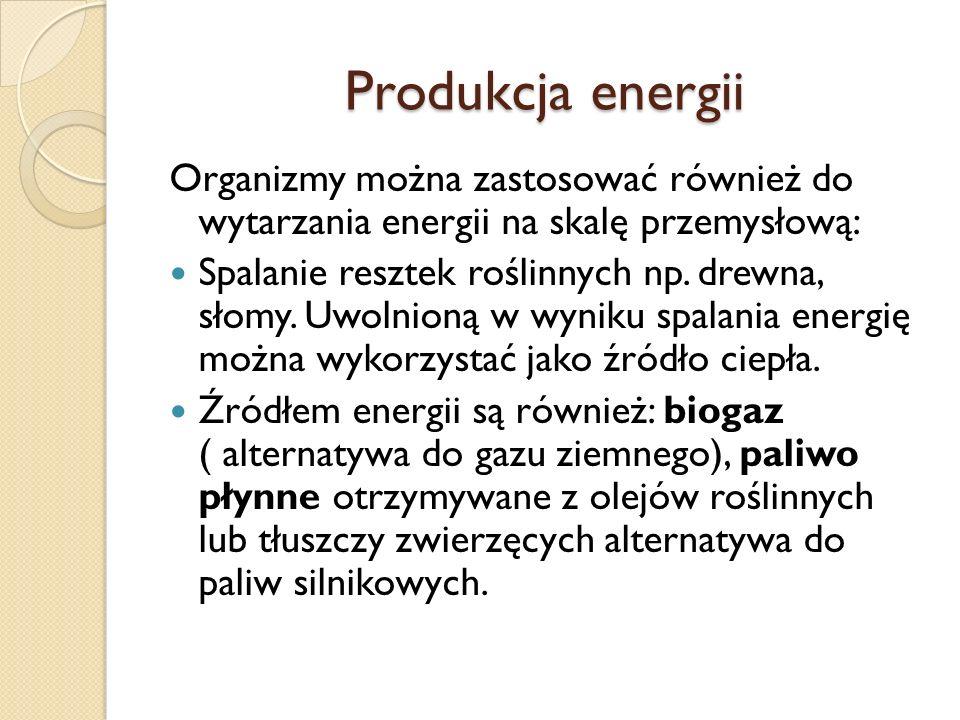 Produkcja energii Organizmy można zastosować również do wytarzania energii na skalę przemysłową: