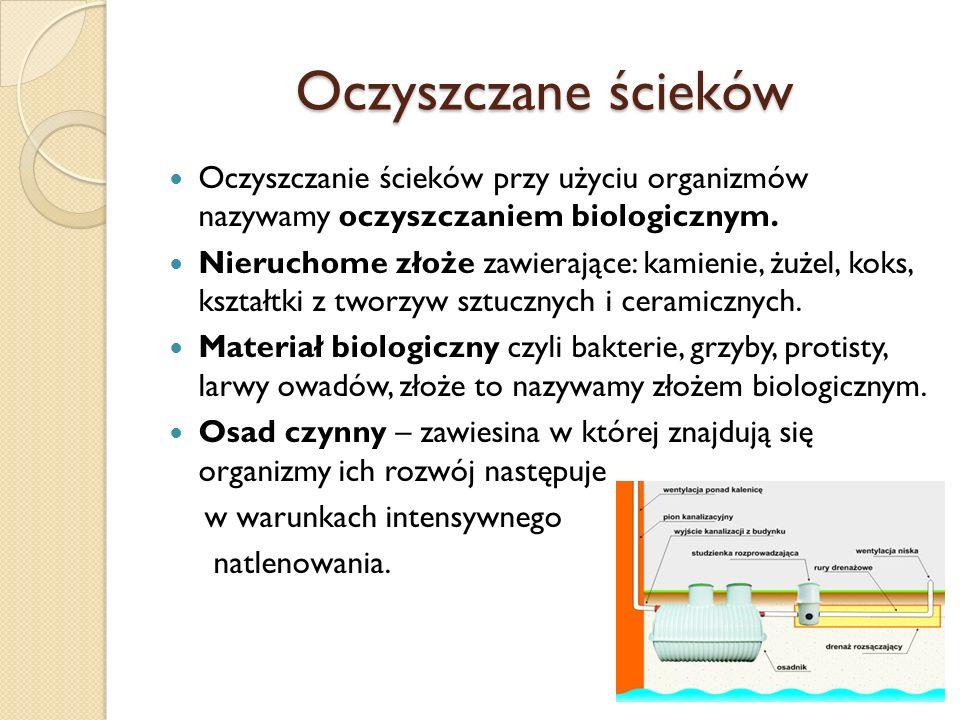 Oczyszczane ścieków Oczyszczanie ścieków przy użyciu organizmów nazywamy oczyszczaniem biologicznym.