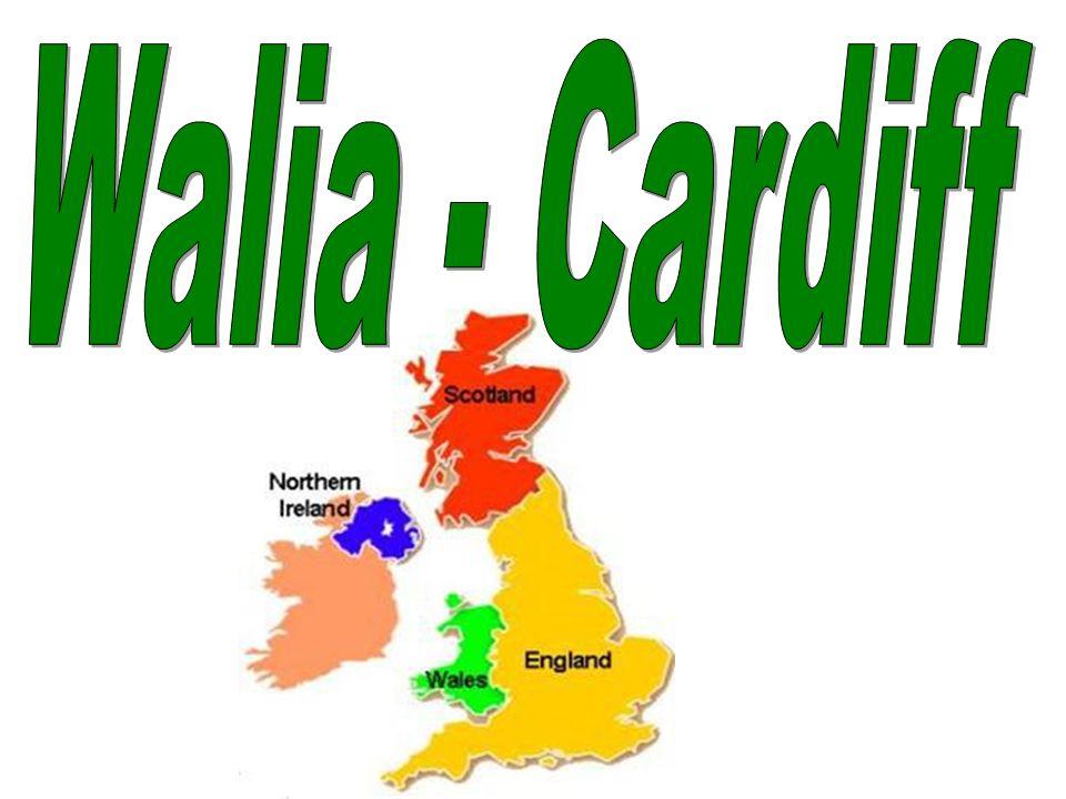 Walia - Cardiff