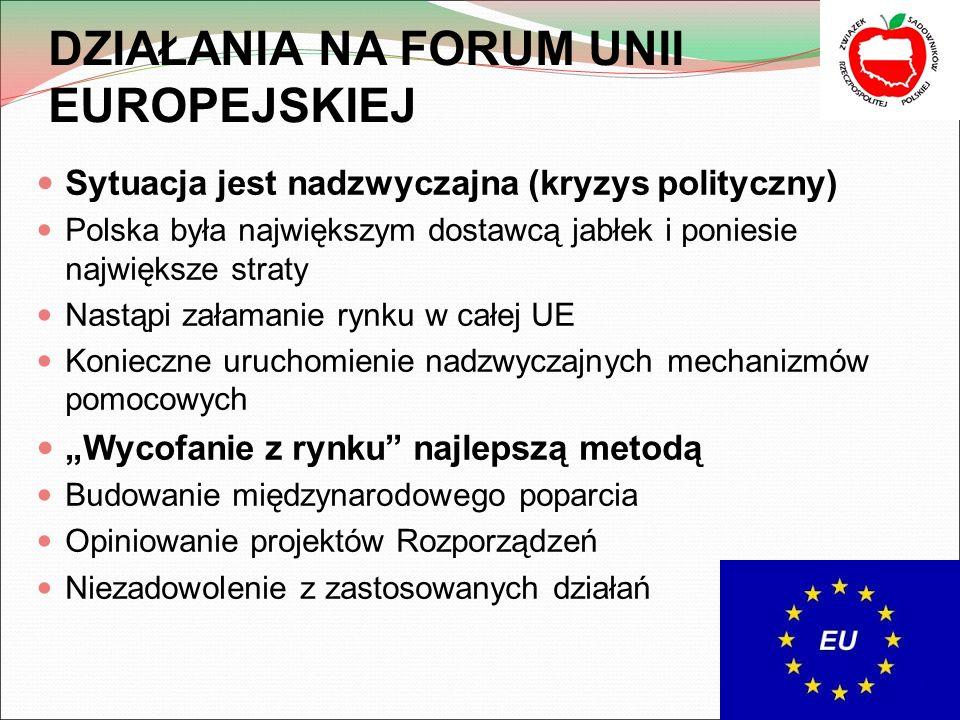DZIAŁANIA NA FORUM UNII EUROPEJSKIEJ